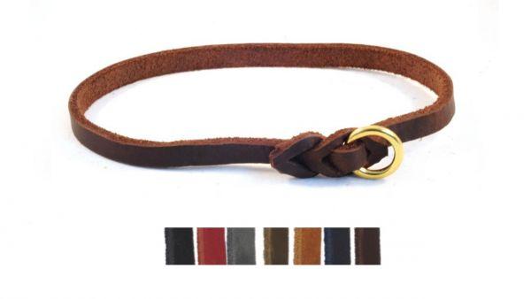 Halsband hund