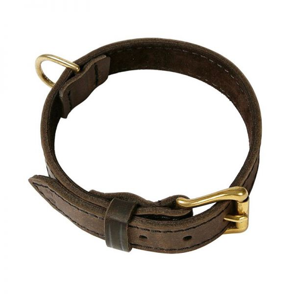 Klin Fettleder Halsband braun unterlegt Vollmessing